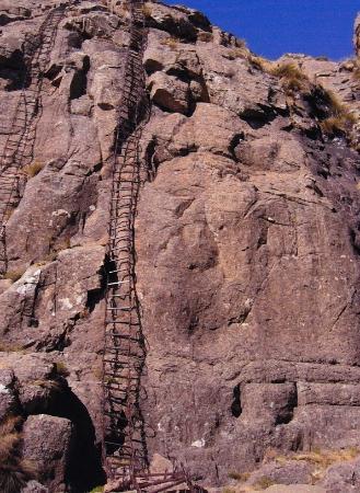 Amphitheatre Chain Ladders