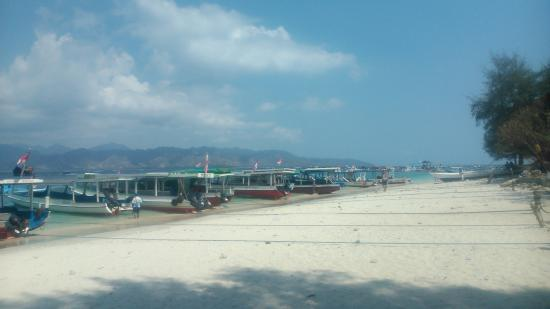 Gili Islands, Indonesia: well done :D