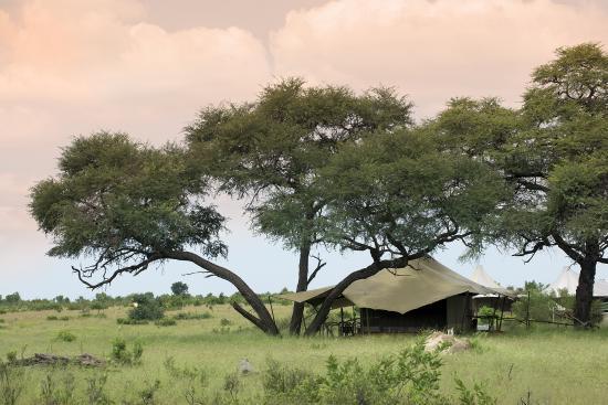 Parque Nacional de Hwange, Zimbabue: Tent at Somalisa Camp
