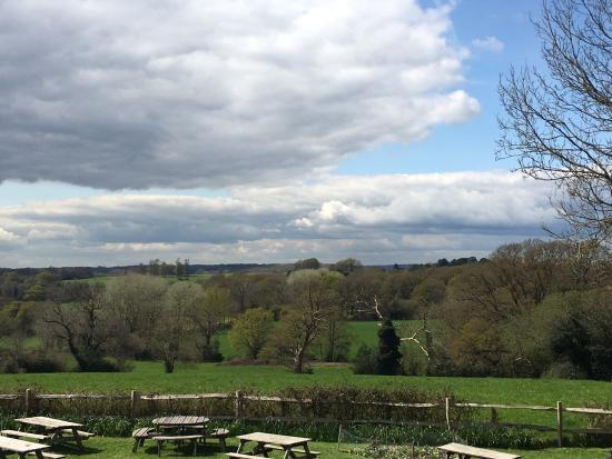 Fletching, UK: View from the enormous beer garden