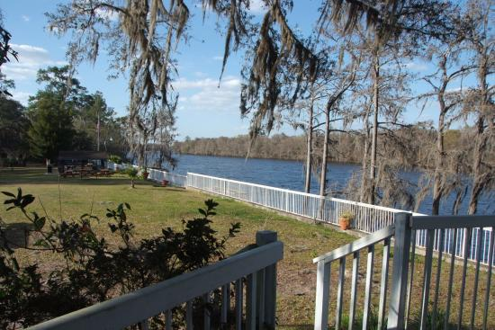 Suwannee Gables Motel and Marina: Majestic suwannee