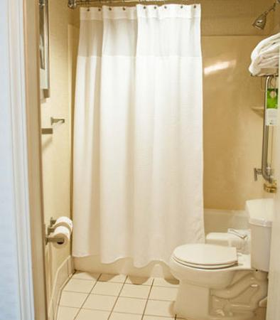 Gahanna, Огайо: Suite Bathroom