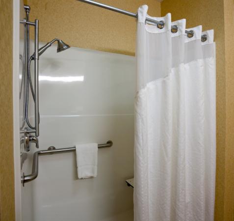 Brandon, Dakota del Sur: Wheel Chair Accessible Guest Bathroom