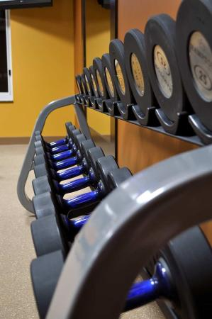 Collinsville, إلينوي: Precor® Fitness Center