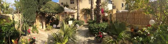 Thirtyseven Gozo: Garden Area