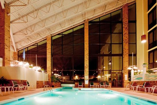 Holiday Inn Roanoke Valley View: Swimming Pool - indoor view