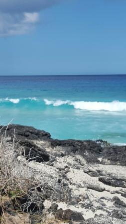 Manini'owali Beach (Kua Bay): 20160411_101207_large.jpg