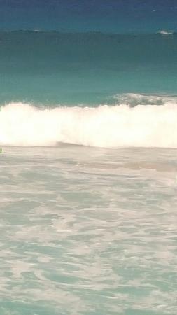 Manini'owali Beach (Kua Bay): 20160411_101523_large.jpg