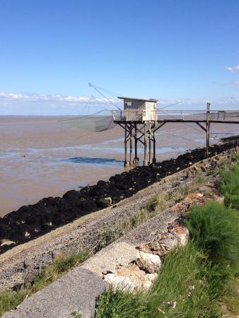 Jau-Dignac-et-Loirac, França: Balade a faire sur la droite du phare de Richard (sur plusieurs kms)