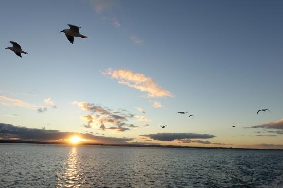 Cowes, Australië: Sunset