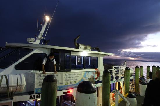 Cowes, Australië: The cruise