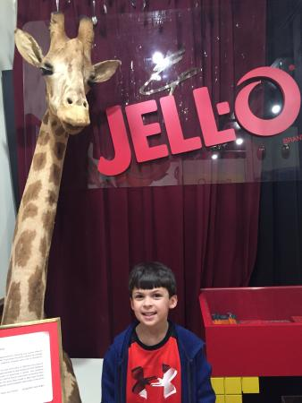 Le Roy, estado de Nueva York: Jell-O Gallery Museum