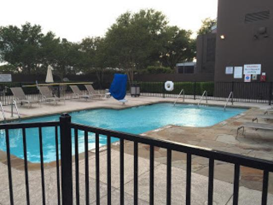 Sheraton Dfw Airport Hotel Dallas Fort Worth Pool