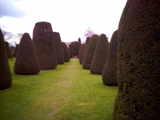 Lapworth, UK: Manicured avenue of trees