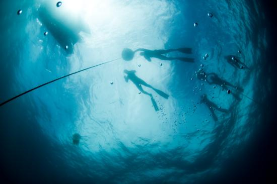 Amadora, Portugal: Freediving and Snorkeling