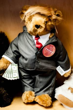 Shelburne, Вермонт: Even the teddy bears are in full election campaign mode