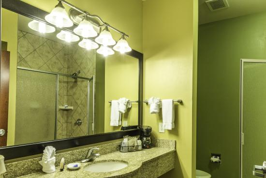 Duncanville, Teksas: Our King rooms feature a large walk-in shower and plenty of countertop space.