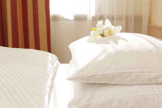 Gaufelden, Alemania: Business Comfort Double Room