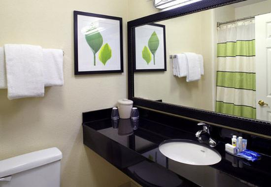 Cumberland, Maryland: Suite Bathroom