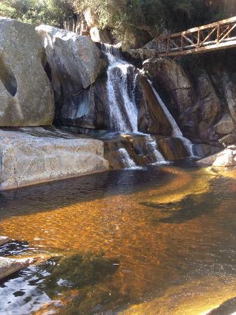 Garden Route Trail: photo0.jpg