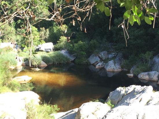 Garden Route Trail: photo3.jpg