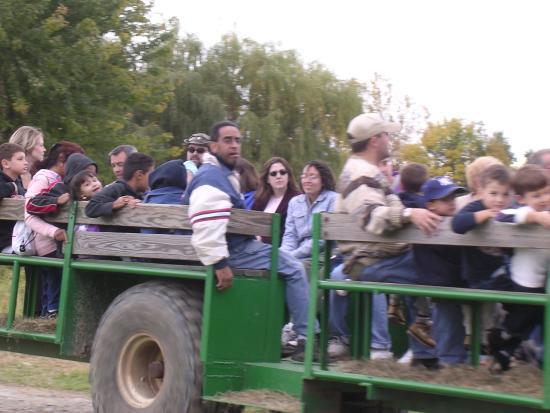 Milton, NY: Our free hayride around the farm