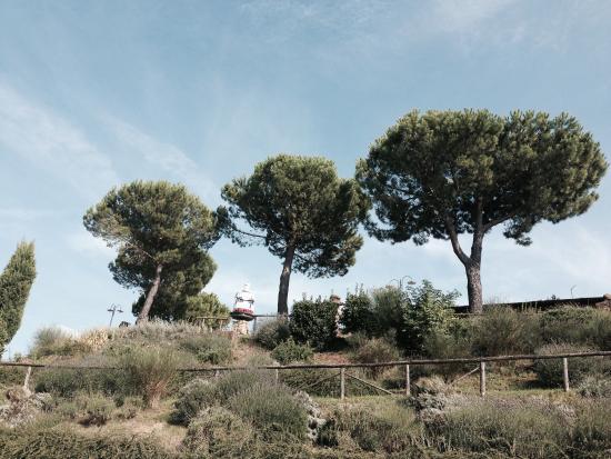 Agriturismo Poggio Pistolese: photo5.jpg