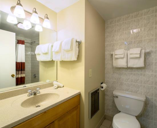 Red Roof Inn & Suites Herkimer: Bathroom