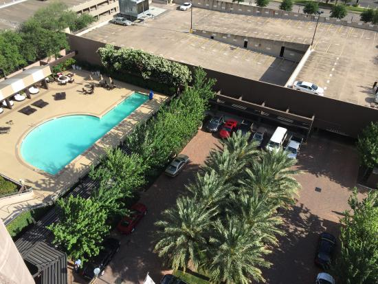Swimming pool picture of doubletree by hilton hotel - Windsor village swimming pool houston tx ...