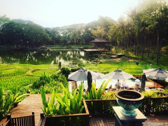 Four Seasons Resort Chiang Mai ... - no.tripadvisor.com