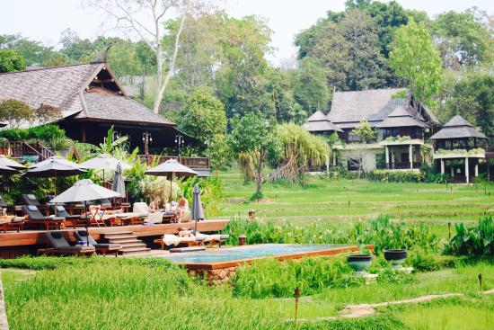 Perfect stay in Chang Mai - Review of Four Seasons Resort ...