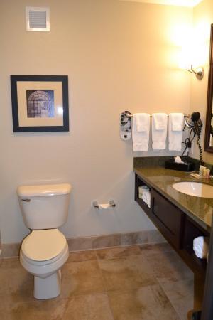 Guest Room Bathroom at Holiday Inn Eau Claire South