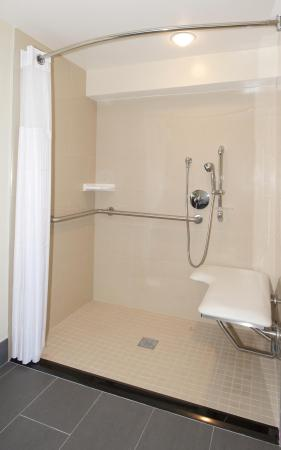 Culver City, CA: Accessible Roll-In Shower