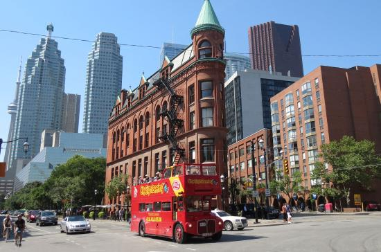 city sightseeing toronto passing the rom picture of city. Black Bedroom Furniture Sets. Home Design Ideas