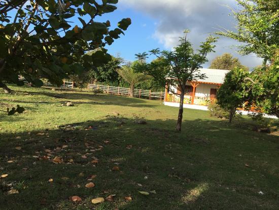 Capesterre, Guadeloupe: photo2.jpg