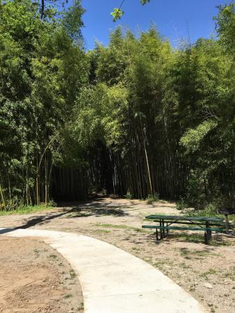 Oconaluftee Islands Park: photo6.jpg