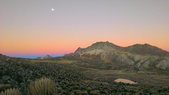 Sierra Nevada National Park, เวเนซุเอลา: Páramo de Mifafi