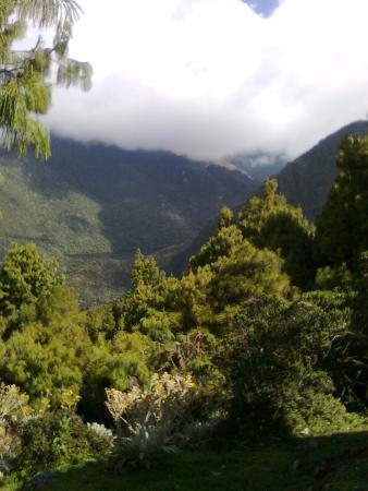 Sierra Nevada National Park, เวเนซุเอลา: Camino hacia la Laguna Negra, en las inmediaciones de la Laguna de Mucubaji