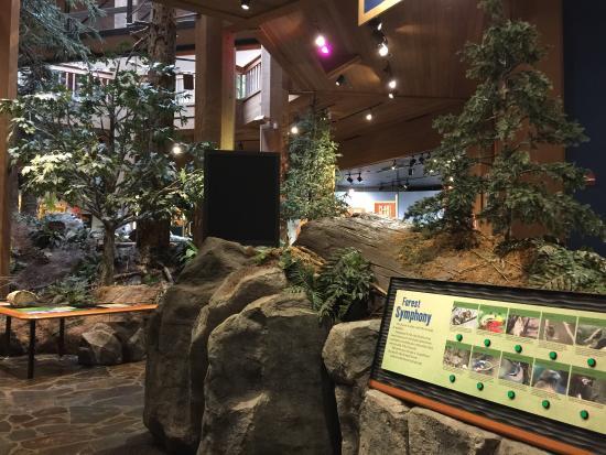 World Forestry Center: photo9.jpg