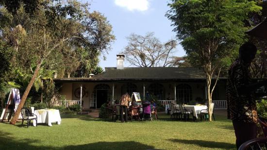 Tamambo Karen Blixen: Garden Lunch