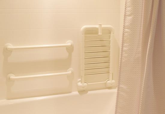 Fletcher, Северная Каролина: Accessible Guest Bathroom