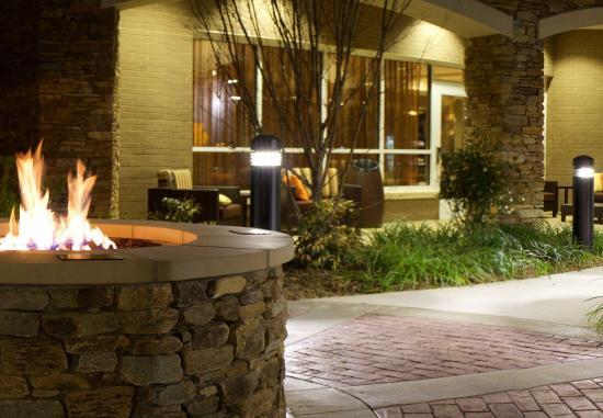 Fletcher, Северная Каролина: Firepit at Courtyard