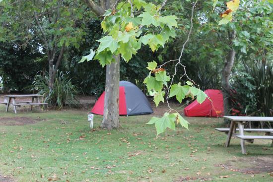 Turangi, Nieuw-Zeeland: campsites