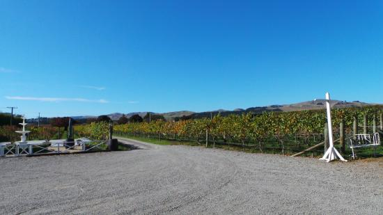 Martinborough, Nouvelle-Zélande : Tirôhana Estate