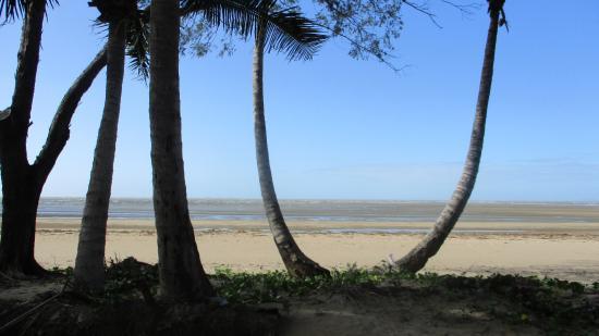 Conway Beach Tourist Park