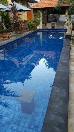 Pool - Nitya Home Stay Photo