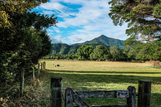 Marlborough Bed & Breakfast: View of the Surrounding Mountains