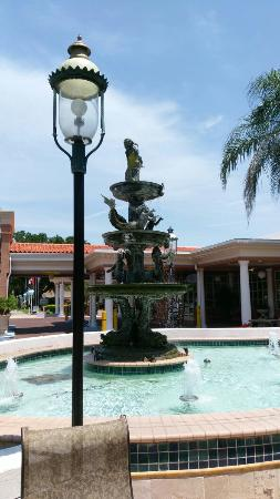 Do Safety Harbor Resort And Spa Reviews