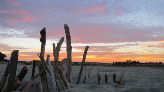 Timaru, Nowa Zelandia: Caroline Bay - sun-setting