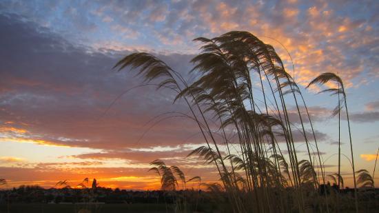 Timaru, Nowa Zelandia: Caroline Bay - sun setting